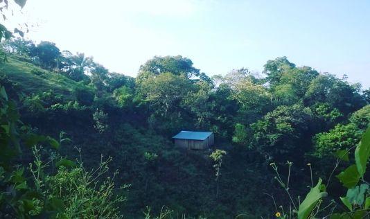 Casa en Ladera
